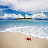 Tropical island beach with perfect sky Royalty Free Stock Photos
