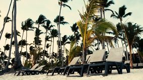 Tropical island beach in Punta Cana resort. Lounge chairs on the sand. Tropical island beach in Punta Cana resort, Dominican Republic. Lounge chairs on the sand stock video footage