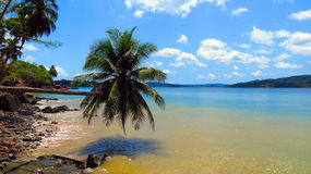 Tropical Island Beach. Seascape with an inclined palm tree on a tropical island, Ross Island, Andaman and Nicobar Islands, India, Asia Royalty Free Stock Images