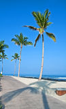 Tropical Island Beach and Sidewalk Stock Photography