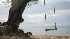 Tropical island beach tree swing. Peaceful sea view background. HD Slowmotion. Koh Phangan, Thailand. stock video