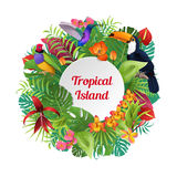 Tropical Island Birds, plants flowers  Royalty Free Stock Photos