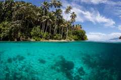 Tropical Island and Clear Water. Clear sea water bathes a tropical island in Raja Ampat, Indonesia. This beautiful region is known to harbor high marine Stock Photography