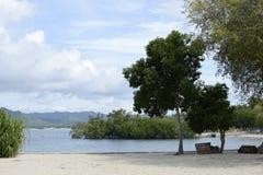 Tropical Island coast trees, grasses vegetation on island resort. Laiya, San Juan, Batangas, Philippines - May 28, 2017: Tropical Island coast trees, grasses Royalty Free Stock Photo