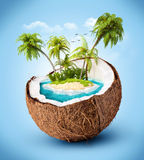 Tropical island. In coconut. Travelling, vacation Stock Images