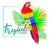 Tropical island composition with parrot leaves flowers Royalty Free Stock Photography