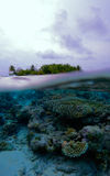 Tropical island and coral reef, Maldives Stock Image