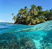 Tropical island with corals underwater Royalty Free Stock Images