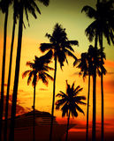 Tropical Island Cruise Vacation Holiday Tourism Concept Stock Images