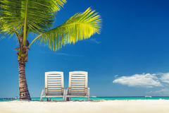 Tropical island and exotic beach Stock Image