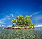 Tropical island with exotic green plants and coconut trees Royalty Free Stock Photo