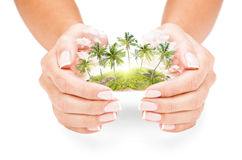 Tropical island in female hands stock photography