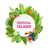 Tropical Island Flora And Toucan Frame Royalty Free Stock Images