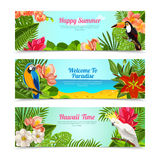 Tropical island flowers horizontal banners set Stock Photos