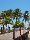 Tropical Island Footbridge Stock Photography
