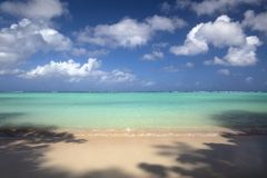 Tropical island Guam and Tumon bay. Shadow of tree on the beach royalty free stock photo
