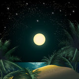 The Tropical Island. Illustration of the tropical island sandy coast and palm trees against the quiet sea and the clear star sky stock illustration