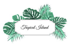Tropical island jungle tree leaves border frame. Tropical island border frame template. Horizontal rectangle square box decorated with exotic jungle rain forest Stock Images