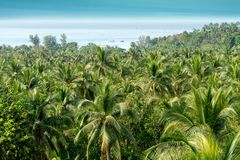 Tropical island landscape. Ko phangan island beautiful landscape, Thailand Royalty Free Stock Photo