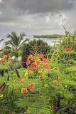 Tropical island Landscape Stock Photo