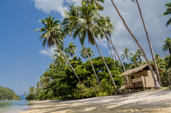 Tropical island landscape, El, Nido, Palawan, Philippines, Southeast Asia. Empty Hut under Palms on Tropical island , El Nido, Palawan, Philippines, Asia Royalty Free Stock Photography