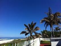 Tropical island. Life stock image