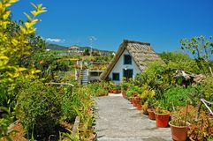Tropical island life and housing. A thatched roof and garden on the sub tropical island of Madeira, Portugal royalty free stock photos