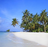 Tropical island, Maldives. View of island from the sea, maldives Stock Images
