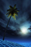 Tropical island at night Royalty Free Stock Images