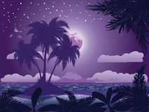 Tropical island at night Royalty Free Stock Image