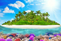 Tropical island in Ocean and beautiful underwater world. Stock Photo