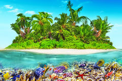 Tropical island in Ocean and beautiful underwater world. Royalty Free Stock Photo
