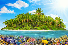 Tropical island in Ocean and beautiful underwater world. Royalty Free Stock Photos