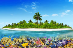 Tropical island in Ocean and beautiful underwater world. Stock Photos