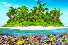 Tropical island in Ocean and beautiful underwater world. Stock Images