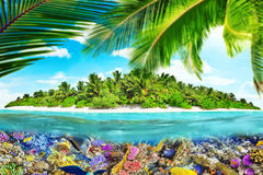 Tropical island in Ocean and beautiful underwater world. Royalty Free Stock Images