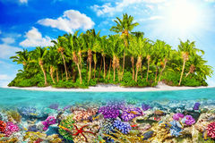 Tropical island in Ocean and beautiful underwater world. Stock Photography
