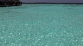 Tropical island at ocean. Maldives. The Palm tree on tropical island at ocean. Maldives stock footage