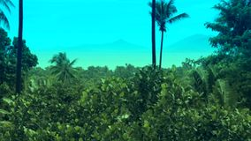 Tropical island Ocean Palm stock footage