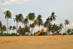 Tropical island in the ocean of Sri Lanka royalty free stock photography