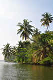 Tropical island in the ocean of Sri Lanka Stock Images