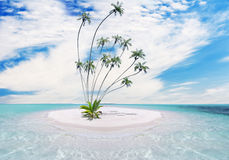 Tropical island with palm Royalty Free Stock Image