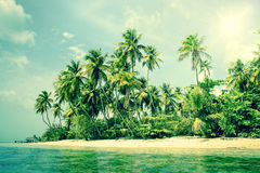 Tropical island with palm trees on the beach Royalty Free Stock Images