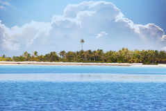 The tropical island with palm trees in the sea Stock Photos