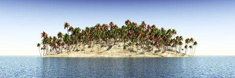 Tropical island with palms Stock Images