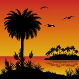 Tropical island, palms, flowers and birds Stock Photos