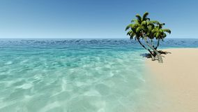 Tropical island with palms in turqouse sea. Tropical island with palms in clear turqouse sea stock video
