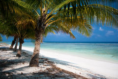 Tropical Island Paradise Stock Image