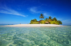Tropical island paradise. Beautiful tropical island vacation paradise with white sand, tall palm trees, fluffy white clouds, a dark blue sky and surrounded by Royalty Free Stock Photos