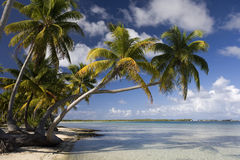 Tropical Island Paradise - Cook Islands Royalty Free Stock Image